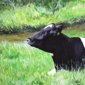 Koe in de zon, acrylverf op doek 30x30cm
