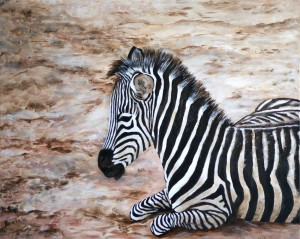 Zebra, acryl op doek 40x50cm